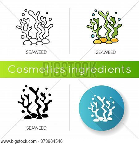 Seaweed Icon. Natural Component. Skincare Treatment Product. Antiaging Effect. Marine Grass Extract.