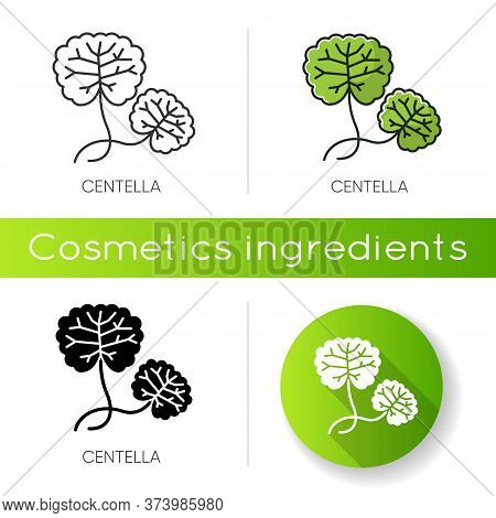 Centella Icon. Healing Plant. Herbal Component. Natural Skincare. Organic Treatment. Leaves For Nour