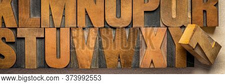 alphabet abstract in vintage letterpress wood type printing blocks, panoramic banner