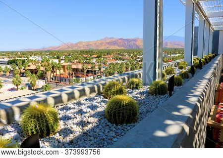 June 22, 2020 In Palm Springs, Ca:  Rooftop Deck Ledge With Barrel Cacti Surrounded By Rocks Taken A