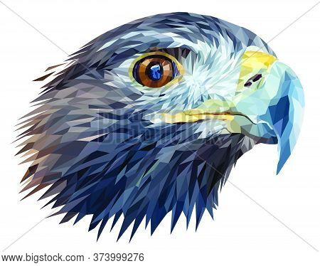 Golden Eagle Head Isolated On White Background. The Golden Eagle Has A Piercing Gaze And A Sharp Pow