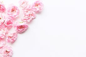 Styled Stock Photo. Spring Feminine Scene, Floral Composition. Decorative Banner, Corner Made Of Bea
