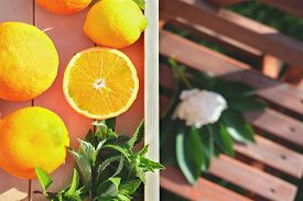 Ripe Oranges And Lemons On A Table In A Garden. Harvesting And Farming Concept. Citrus Garden . Wood