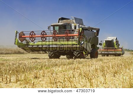Agriculture - Combines (harvesters) on the field poster