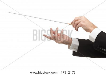 Male orchestra conductor hands one with baton. White background. poster