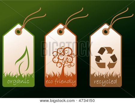 Ecology Tags