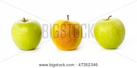 Bruised Apple Between Two Healthy Apples