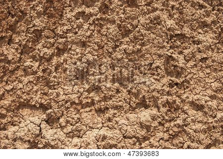 Red clay loam