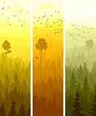 Vertical abstract banners of hills of coniferous wood with folk birds in yellow and orange tone. poster