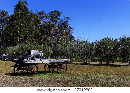 Oak wine barrel on a cart, Hunter Valley, Australia
