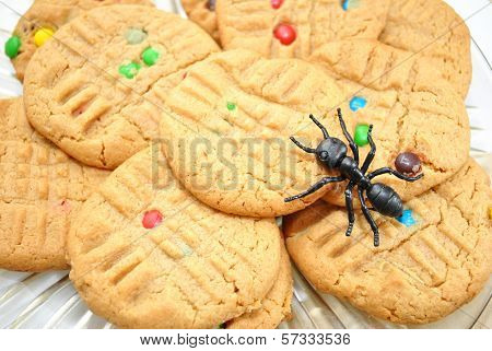 Peanutbutter and Candy Cookie with Toy Ant