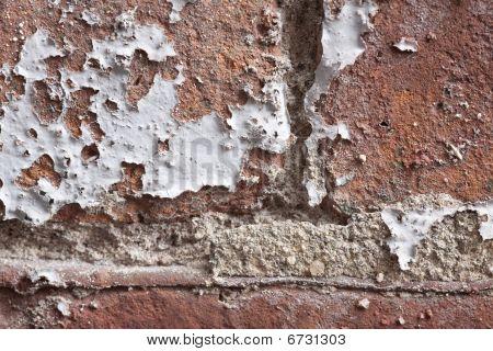 Brick Wall Close Up