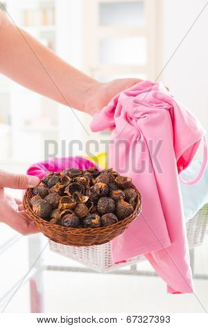 Woman's hands holding a basket full of soap nuts