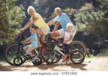 Senior couple with grandchildren on country bike ride