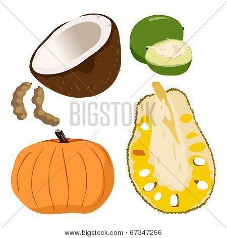 Caimito, Coconut, Pumpkin, Tamarindus Indica, Jackfruit