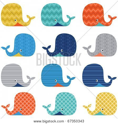 Colorful Cute Whale