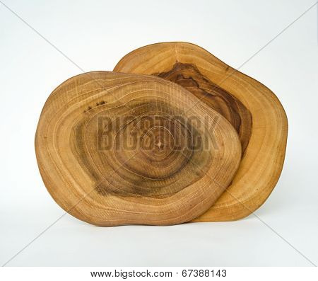 Cross Section Wood Grain Tree Rings