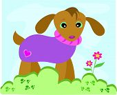 Here is a cute Dog with a purple sweater, standing in a garden. poster