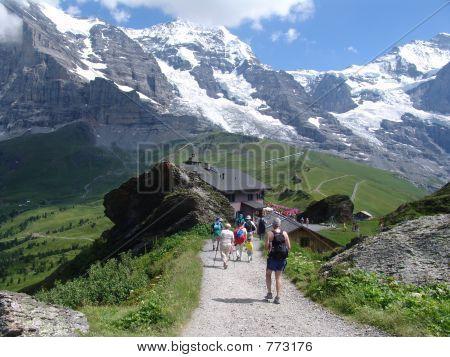 On the Mannlichen to Kleine Scheldegg Trail