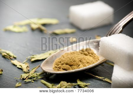 Stevia Rebaudiana Bertoni Powder