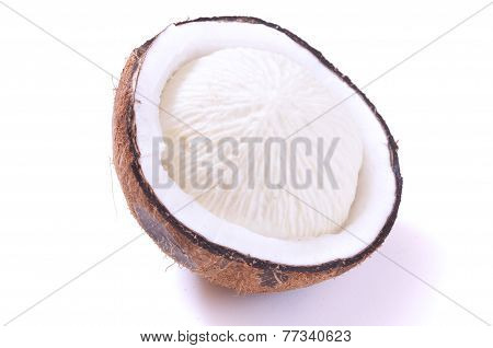 Sprouted Coconut Meat
