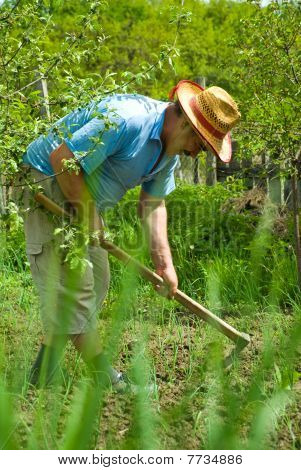 Peasant Digging In The Garden