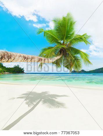 Tropical Beach Baie Lazare, Mahe Island, Seychelles