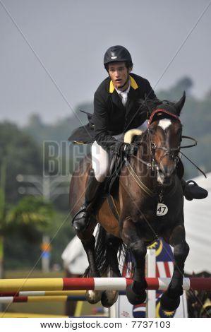 Premier Cup 2010 Equestrian