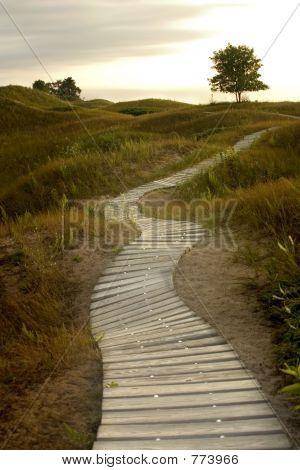 Boardwalk to Heaven