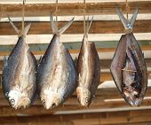 Filleted fish is drying from the rafters a Taiwan specialty poster
