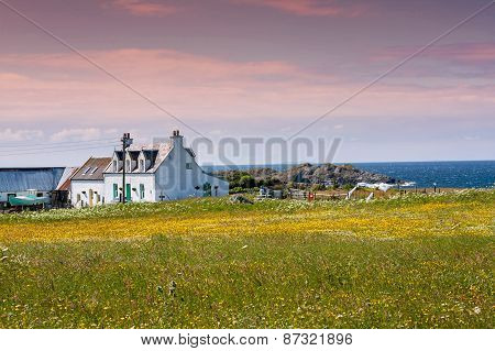 Houses Abd Fields Of Iona In The Inner Hebrides, Scotland