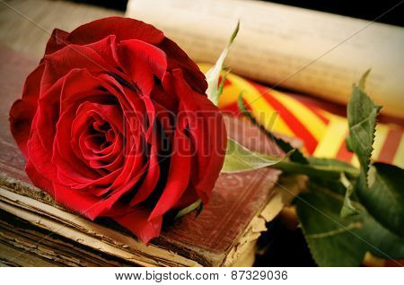 closeup of a red rose and the catalan flag on an old book for Sant Jordi, the Saint Georges Day, when it is tradition to give red roses and books in Catalonia, Spain
