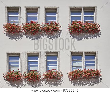 windows and flowers of an office building