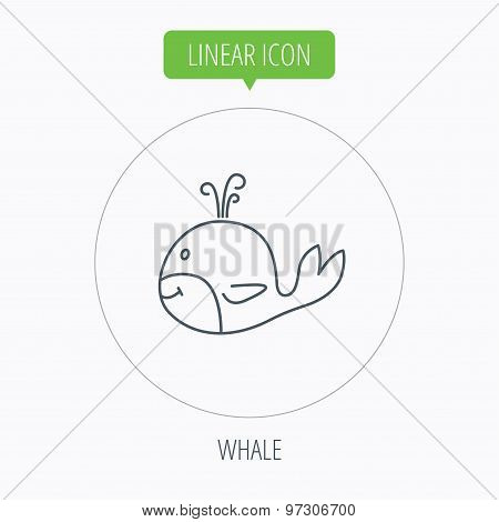 Whale icon. Largest mammal animal sign. Baleen whale with fountain symbol. Linear outline circle button. Vector poster