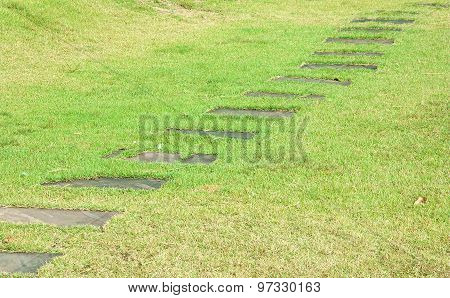 Stone Block Walk Path