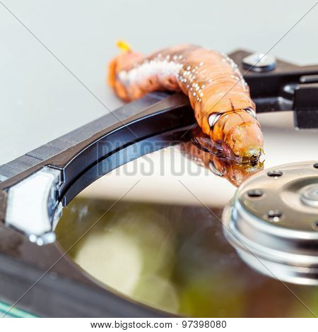 Malicious Computer Worm . - Concept For Data Security.
