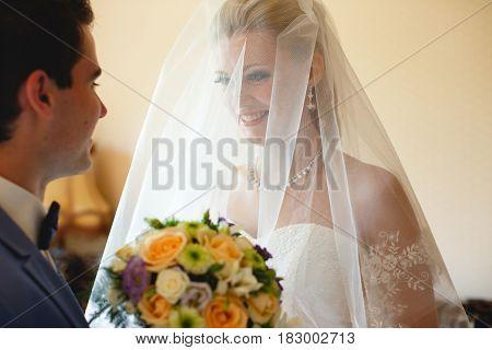 Attractive Bride In The Bridal Veil Meets A Groom