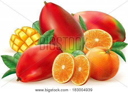 Orange and mango fruits with leaves and slices. Vector illustration