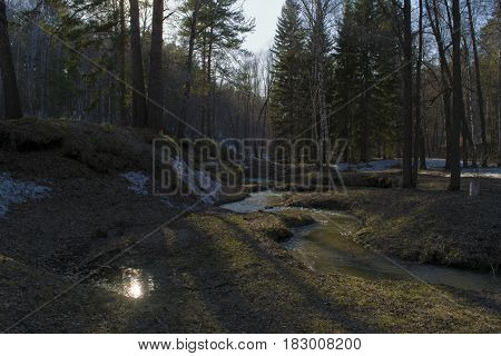 Creek flows between hills and forest in Siberia.