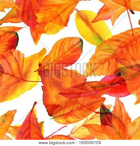 A seamless pattern with vibrant watercolor leaves. Autumnal repeat print