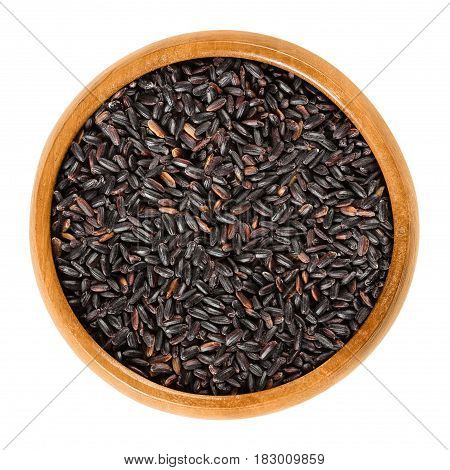 Organic black rice in wooden bowl. Also known as purple rice or pearl black. Oryza sativa. Rare Chinese rice, highest in protein. Isolated macro food photo close up from above on white background.