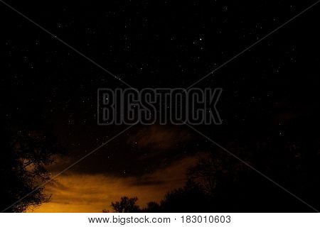 Night full of stars behind the trees with the clouds on the background and Madison affect