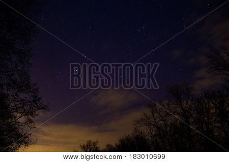Night full of stars behind the trees with the clouds on the background