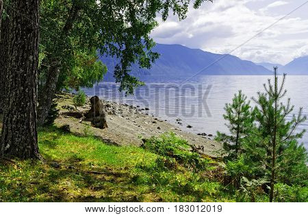 Siberia. The right bank of the Teletskoye Lake