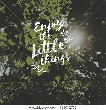 Enjoy little things is a happiness.