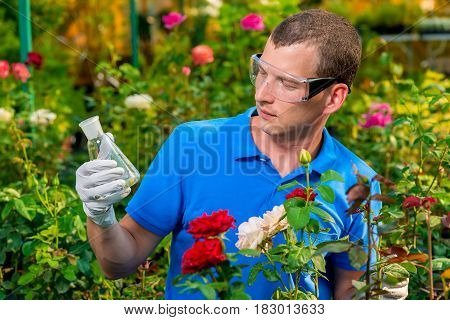 Portrait Of A Biologist With A Biologist With Chemicals In A Test Tube In A Greenhouse