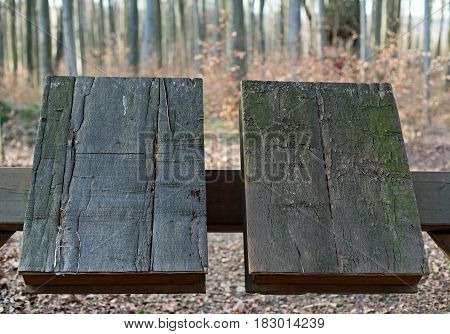 Two wooden books, in the background a forest (out of focus)