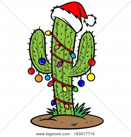 A vector illustration of Christmas Holiday Cactus.