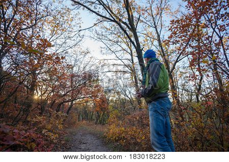 Man controls the drone in the autumn forest among the colorful trees during sunset. Low point of shooting.