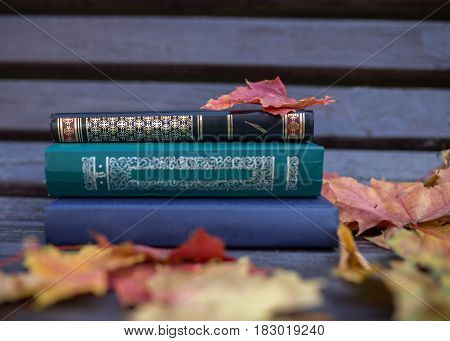 Closed book outdoor. Knowledge is power. Autumn